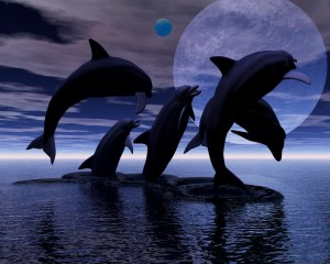 whalesMoon